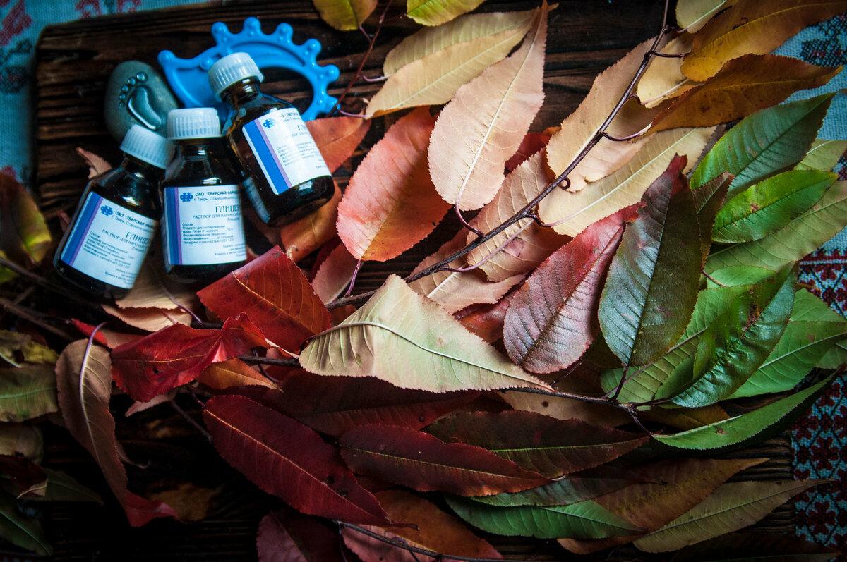 А что, так можно было? Необычные осенние эксперименты с листьями, которые оказались ну очень удачными. Смело делюсь